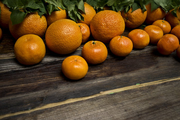 Lots ripe oranges and mandarines