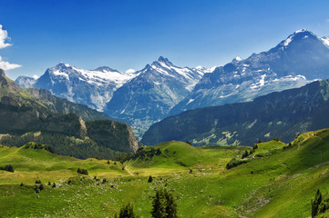 Photo sur Plexiglas Alpes Beautiful idyllic Alps landscape with mountains in summer, Switzerland