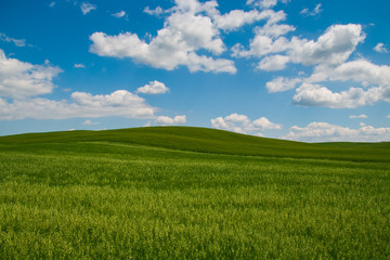 Rolling green hills and blue sky with clouds