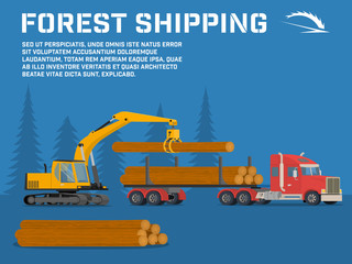 Shipping timber. Loading felled trees in the timber crane