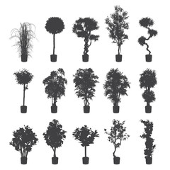house and office plants silhouette set