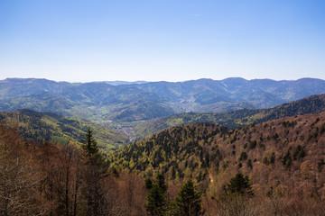 Wall Mural - Grand Ballon Vosges Mountains France