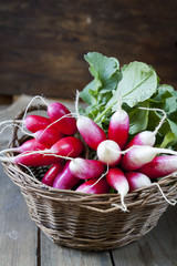 Bunches of fresh radishes in a wicker basket on a wooden table