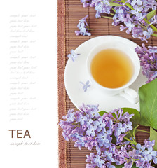 Tea cup with herbal tea and lilac flowers isolated on white background/ herbal tea concept