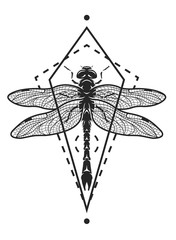 Dragonfly and geometric elements.