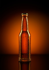 3D Rendering of a beer bottle