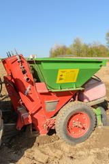 Saatkartoffel werden mit Maschine gepflanzt