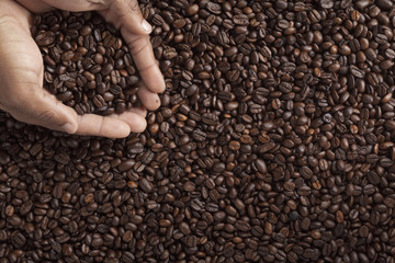 human hand with coffee beans.