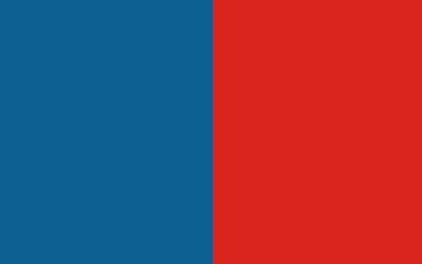 Flag of Narbonne, France