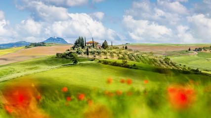 Blühende Landschaften in der Toskana Fototapete