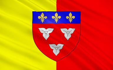 Flag of Orleans, France