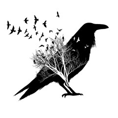 Crow silhouette, with double exposure effect of flying birds and trees on background