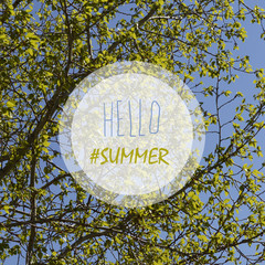 """lettering """"Hello summer"""" on a background of green trees and blue sky"""