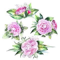 Watercolor camellia vignettes