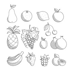 Set of sketched hand drawn linear friuts and berries: apple, pineapple, grape, lemon, orange, banana, pear, cherry, strawberry, plum, pomegranate