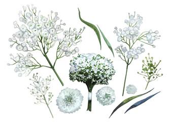 Watercolor gypsophila set