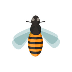 Honey bee vector illustration.