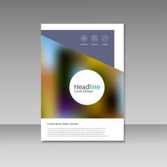 Vector Brochure Design Layout template