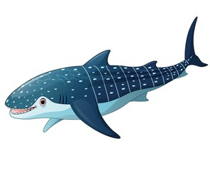 Illustration of whaleshark