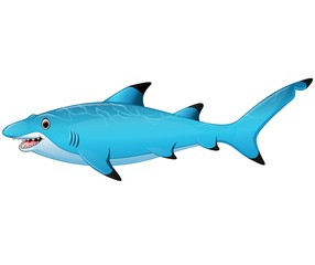 Cute cartoon shark