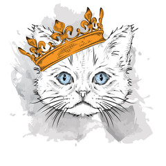 Photo sur Toile Croquis dessinés à la main des animaux Hand draw Image Portrait cat in the crown. Use for print, posters, t-shirts. Hand draw vector illustration