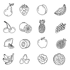 set of doodle hand drawn fruit icon vector illustration