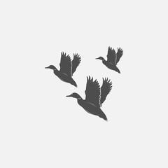 flying ducks in grayscale