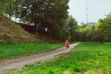 Little girl in the dress runs in the field