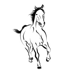 Vector line sketch of a running horse