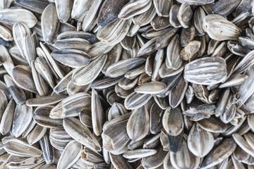 Sunflower seeds background