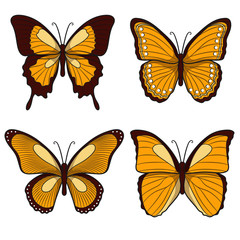Set of yellow vector butterflies. Isolated objects on a white background