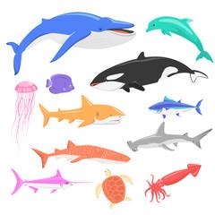 Marine Fauna Set of Aquatic Animals