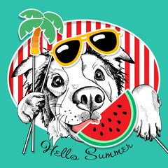 Festive poster with the portrait of the dog Australian shepherd with the summer photo booth props. Vector illustration.