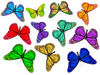 Set colored butterfly. Isolated colored butterfly. Moths fly vector. Beautiful butterfly vector illustration. Isolated butterfly set