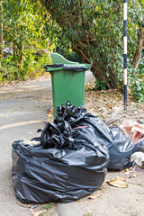 Old large green wheel bin and pile of full garbage bags