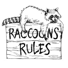 Funny and touching raccoon lies on a plate raccoons rules hand drawn engrave sketch vector illustration
