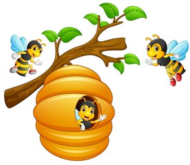 The bees fly out of a beehive hanging from a tree branch