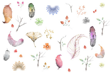Creative Illustration and Innovative Art: Isolated Water Color Style Flowers, Leaves, Floral, Feathers. Realistic Fantastic Cartoon Style Artwork Scene, Wallpaper, Story Background, Card Design