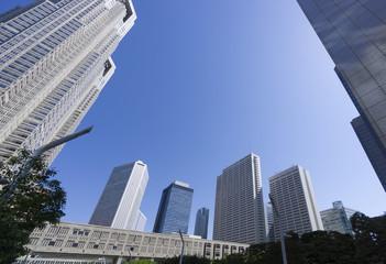 新宿高層ビル街 東京都庁前から望むビル群 快晴 青空 コピースペース
