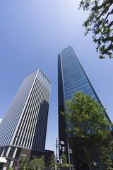 新宿高層ビル街 快晴 青空 緑 開発が新しい 西新宿6丁目 成子坂下エリア