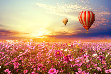 Wall Mural - Landscape of beautiful cosmos flower field and hot air balloon on sky sunset, vintage and retro filter effect style