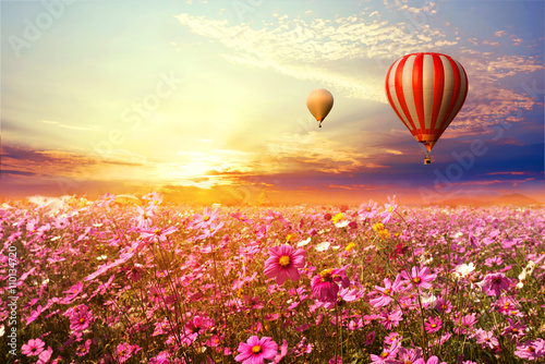 Fototapete Landscape of beautiful cosmos flower field and hot air balloon on sky sunset, vintage and retro filter effect style