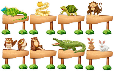 Wooden sign with different wild animals