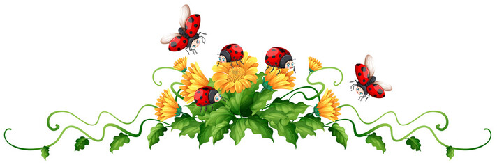 Ladybugs and yellow flowers