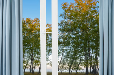 nature landscape with  view through  window