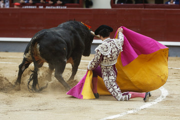 Photo sur Aluminium Corrida bull in the bullring