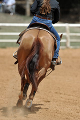 The rear view of a rider on a horseback