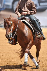 The front view of a rider in the chaps on a horseback during the NRHA competition.