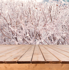 Wooden deck perspective with icy tree branches in the background