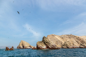 Desert and sea in Paracas area, 4 hours south of Lima, capital of Peru, South America.